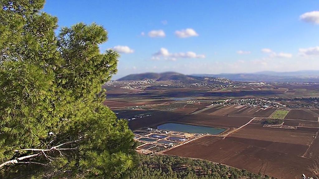TV7:n profeetallinen metsä Nasaretissa