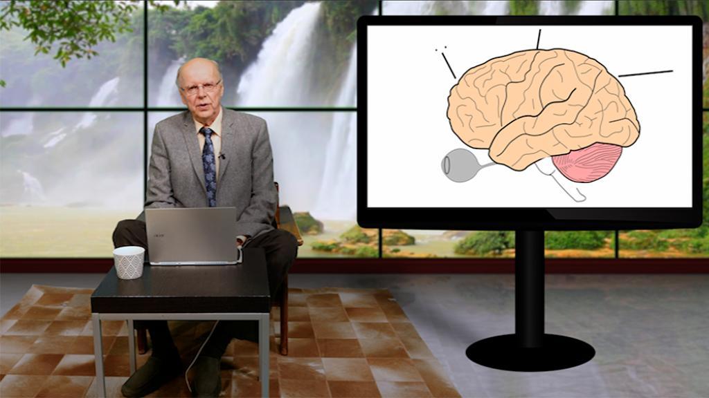 Ihmisaivot ovat maailmankaikkeuden monimutkaisin rakenne. On tärkeää tietää aivosairauksista ja niiden ehkäisystä, sillä noin joka kolmas sairastuu elämänsä aikana sellaiseen.