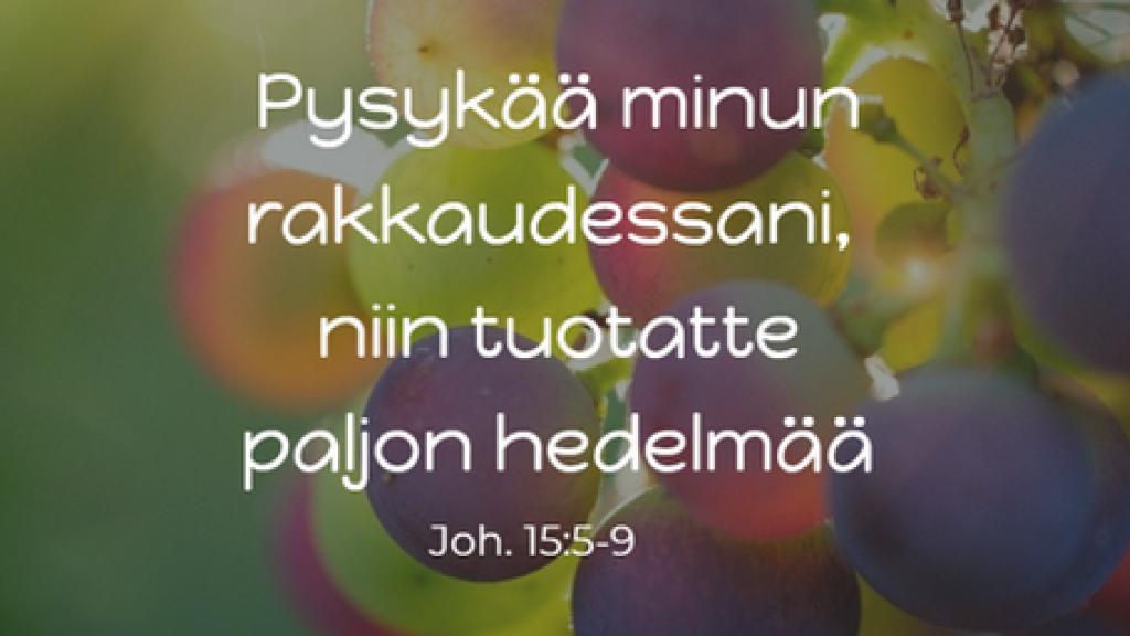Kristittyjen ykseyden rukousviikko