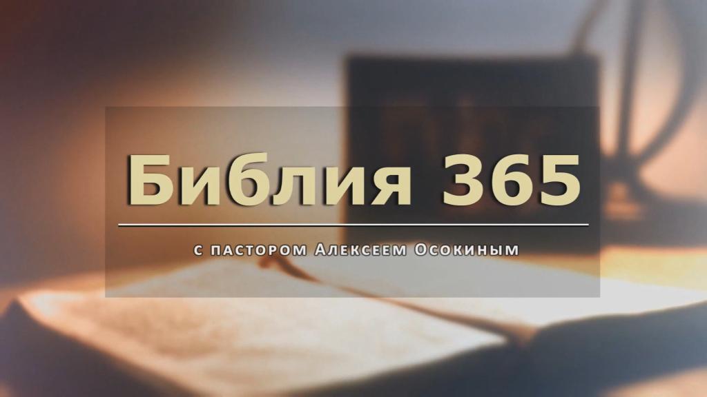 Библия 365