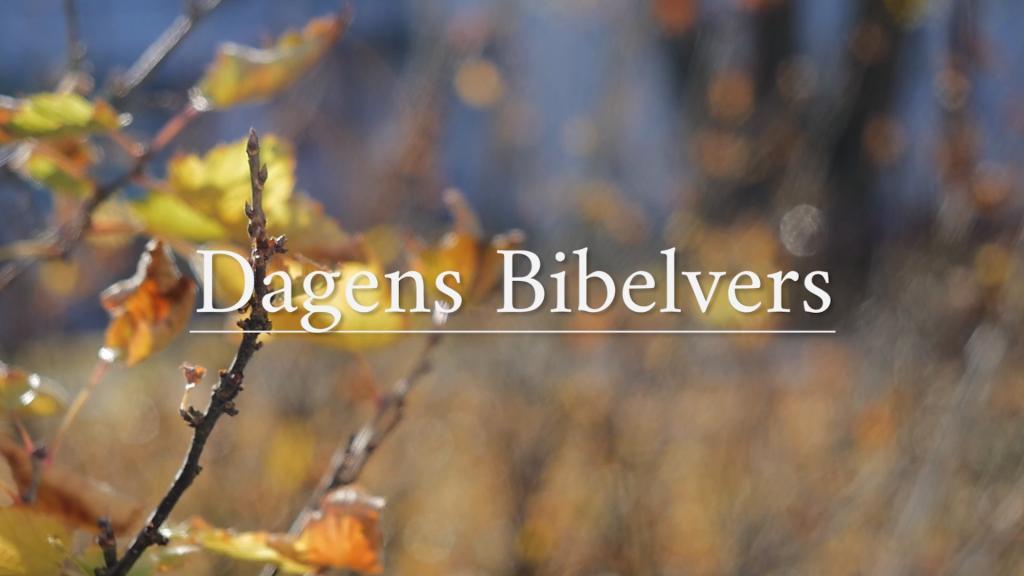 Dagens Bibelvers