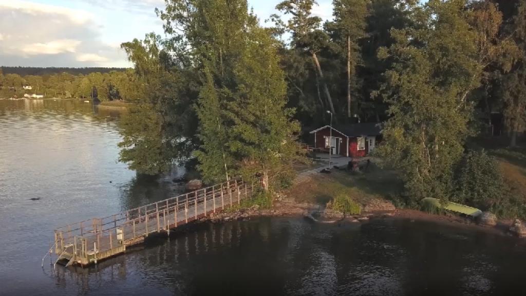 Pekka Reinikainen - Elämän synty