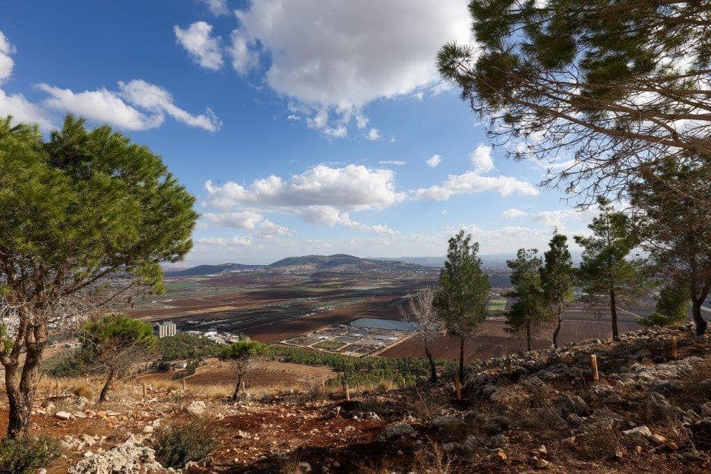 Istuta puu Israeliin